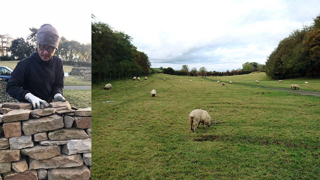 ドライストーンウォーリングのテスト会場(右)と、資格試験で石積みを行米山庭苑の米山拓未(左)